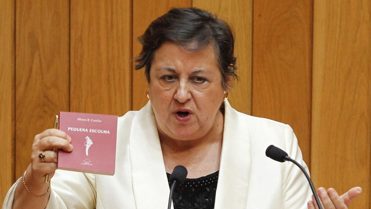 El debate sobre la desigualdad caldeó el Parlamento.Iván Rivas. BNG. Vivienda unifamiliar entre medianeras, cuenta y depósitos por 20.075 euros y vehículo Opel Astra del 2006