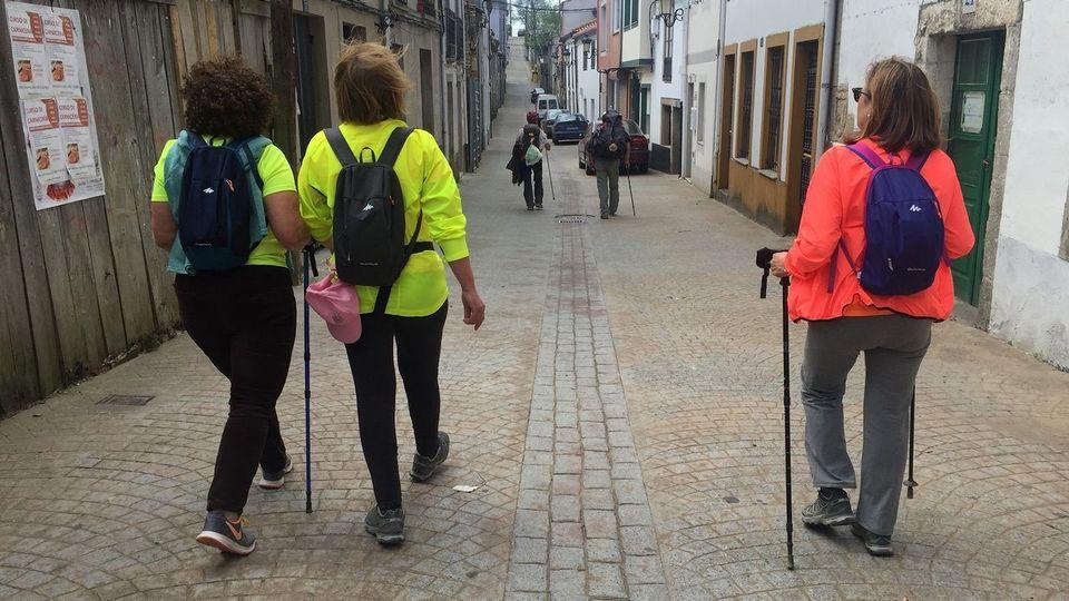 O Pino, Melide, Arzúa y Palas son los concellos con mayor repercusión del Camino en la creación de empleo