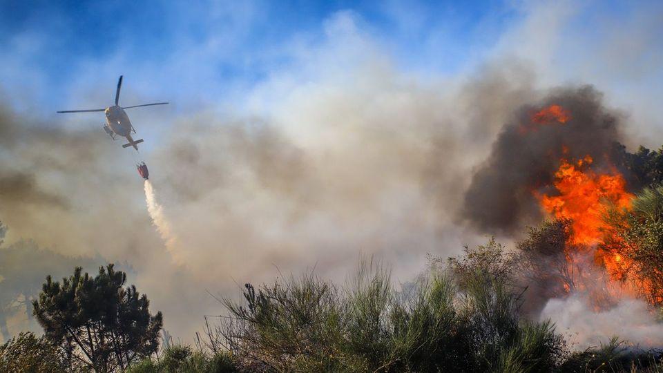 El Gobierno central arranca hoy la campaña de lucha contra incendios con cuatro medios aéreos menos