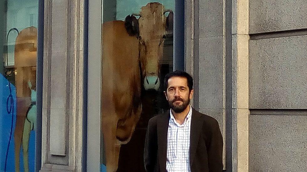 Esteban Luis, director comercial de Xenera