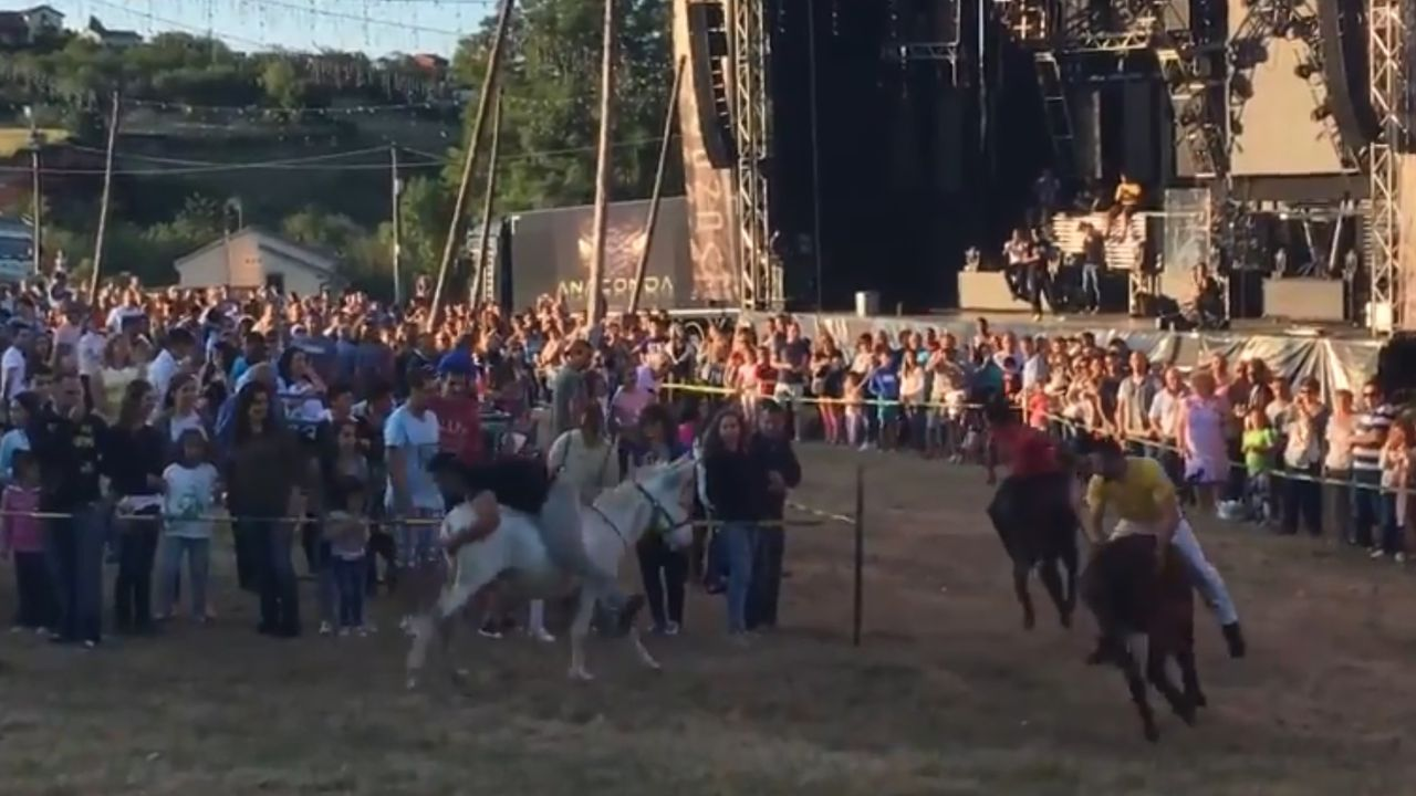 Carrera de burros de la Pañeda.Carreras de bueyes en Piedeloro, Carreño