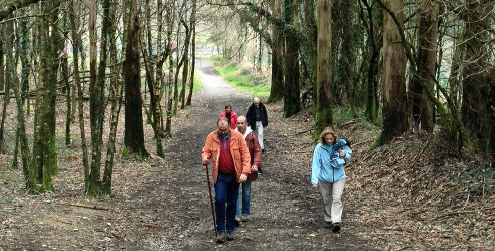 .El Camino Francés permite peregrinar por caminos, sin el problema del asfalto.