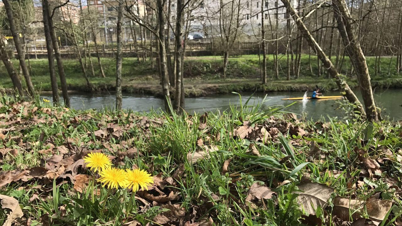 Paseo del río en Pola de Siero