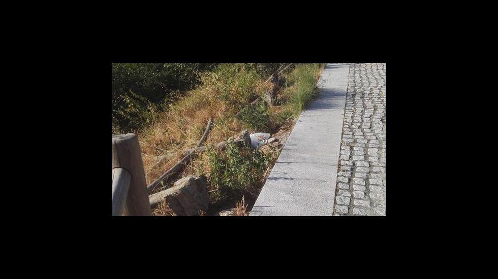 Pradorramisquedo: el pueblo de Ourense que quiso ser zamorano.Tren de Arriva en Gales, compañía que opta a explotar el tren Oporto-A Coruña