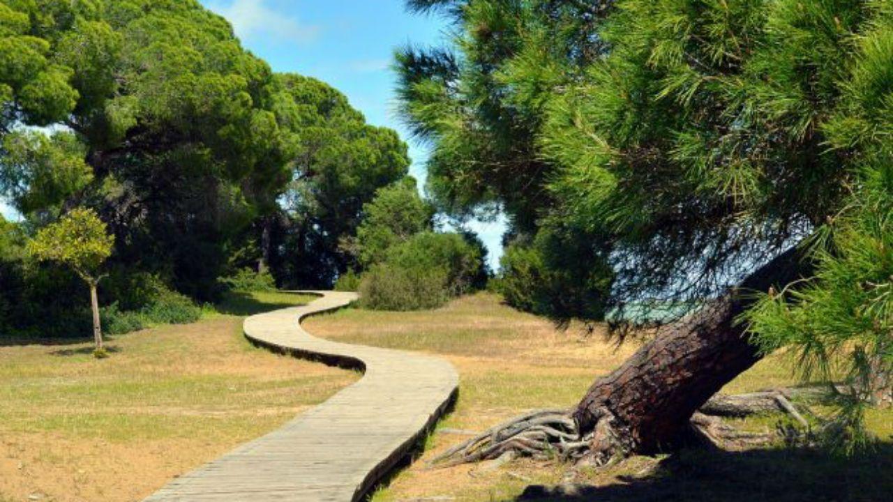 Parque Nacional Doñana