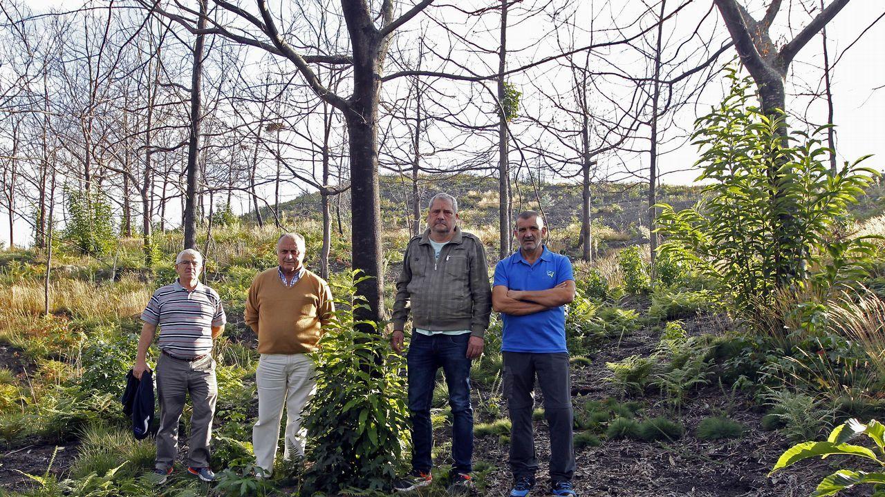 Los comuneros de Vigo reconocen que sus montes necesitan nuevos planes de ordenación