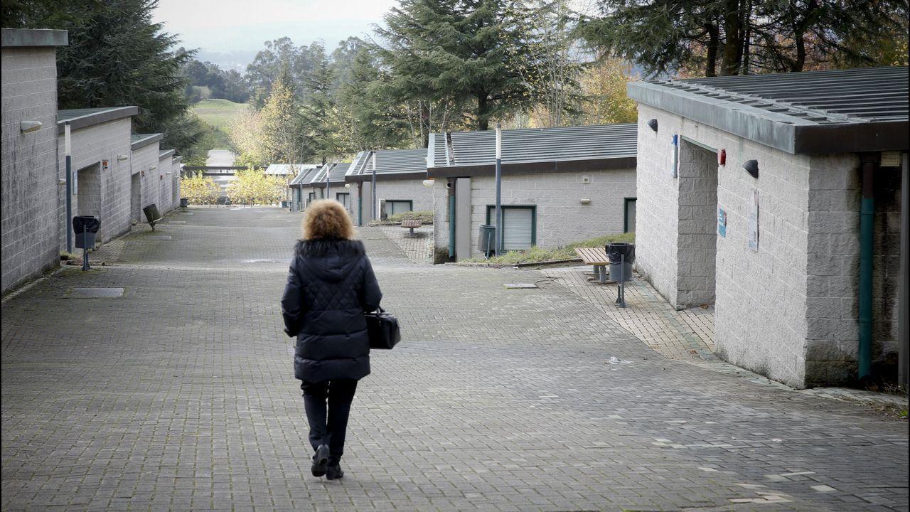 «Compostela, un ano de Voz».Halcones usados en el aeropuerto de Alvedro para el control de aves