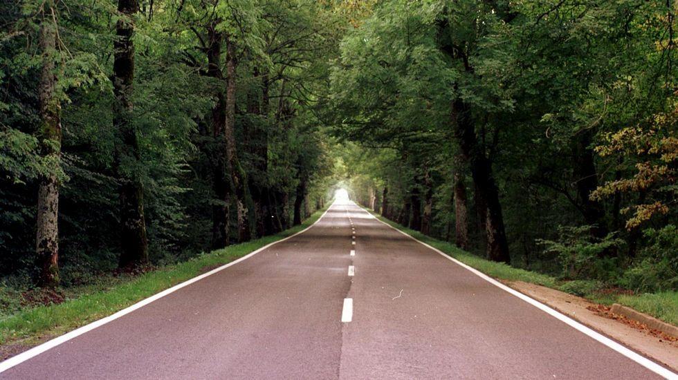 .Tramo del Camino de Santiago en Roncesvalles