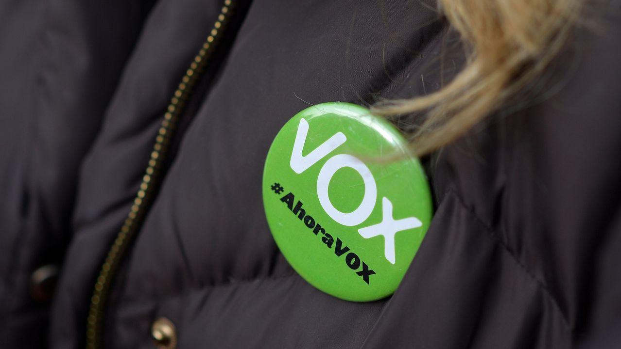 El programa de Vox que ha votado un 11% de los andaluces