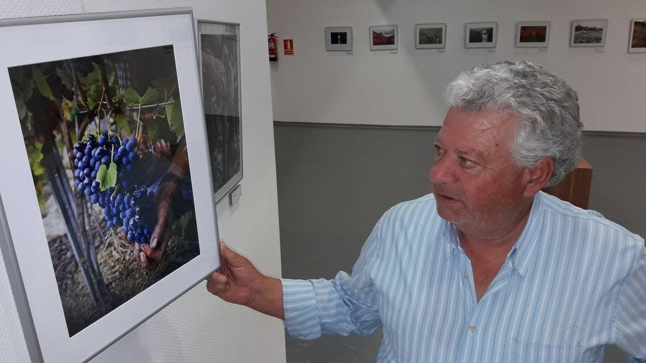 Una de las imágenes que forman parte de la exposición «Viña Sacra»