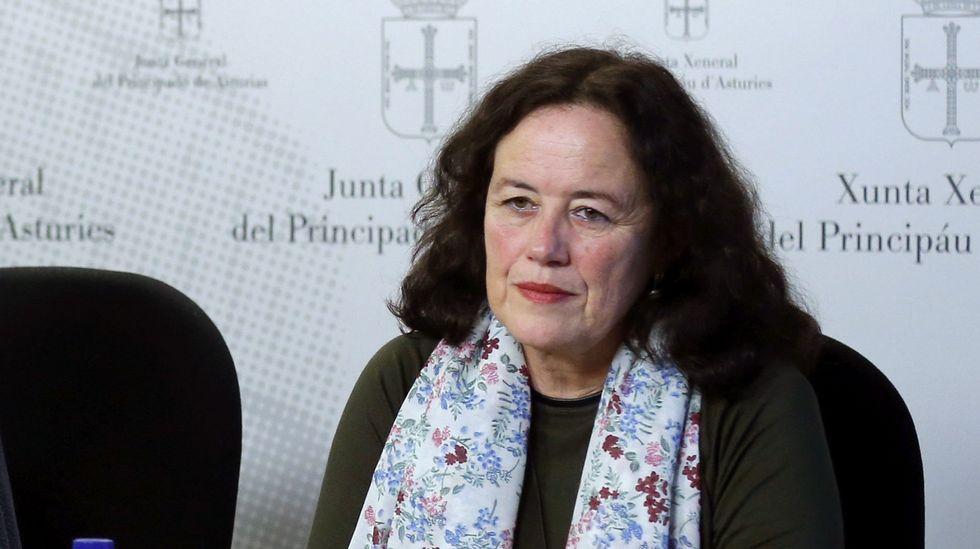 La diputada de Podemos en la Junta General, Paula Valero