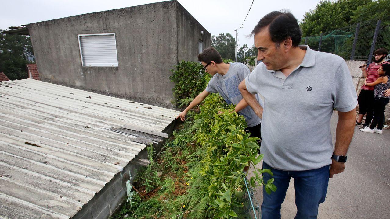 Familiares de Edelmiro Silva muestran el lugar donde fue atacado por velutinas