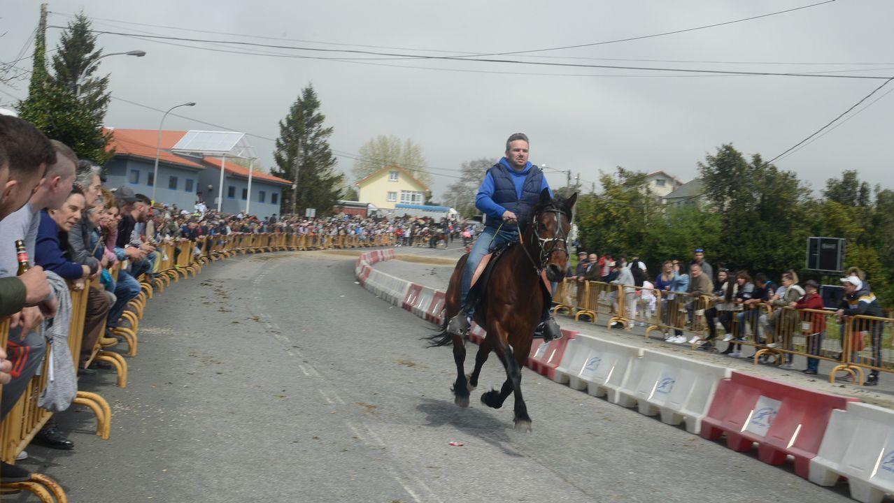 Los caballos abarrotan Moeche en la Feira do 23 de Abril.Alicia Bellón y Queca Aguilar abrieron las puertas de la Artesa en Canido la semana pasada