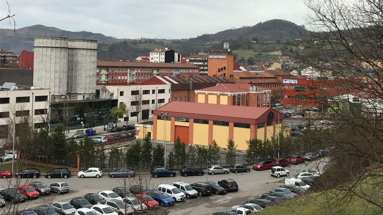 MAGOSTO EN MONTEALEGRE.Vista del polígono Valnalón