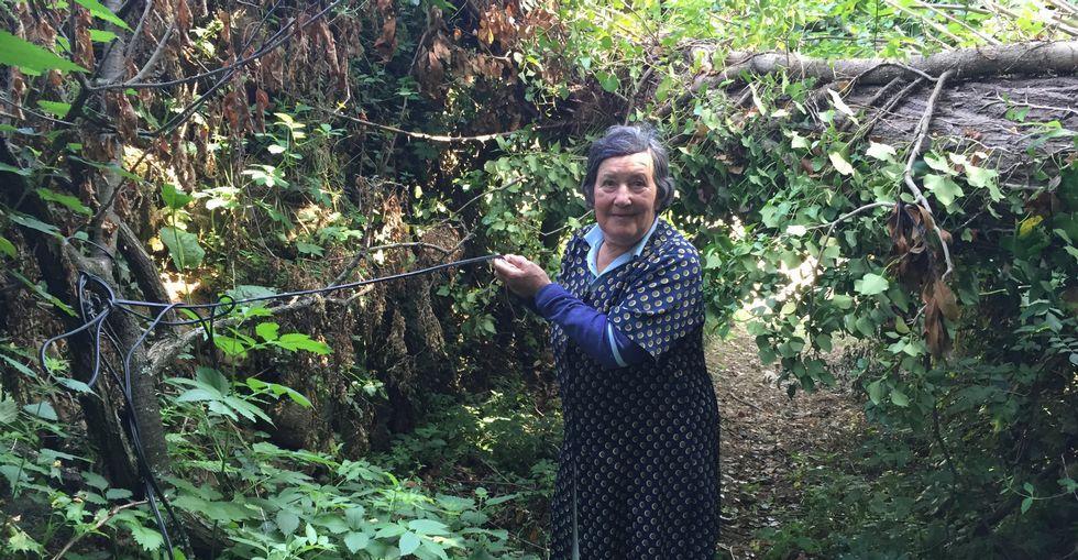 Erundina sostiene uno de los cables atrapados bajo el árbol desde hace casi dos meses.