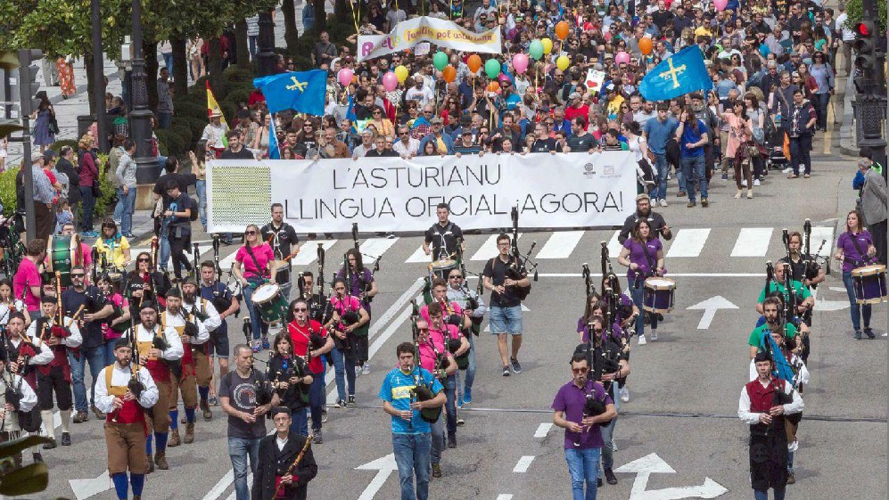 Enfermeras de Familia y Comunitaria reivindican su profesión y la creación de su categoría profesional en Asturias.Vista de la manifestación convocada hoy en Oviedo por la Xunta pola Defensa de la Llingua Asturiana para reivindicar la oficialidad del asturiano en el Principado