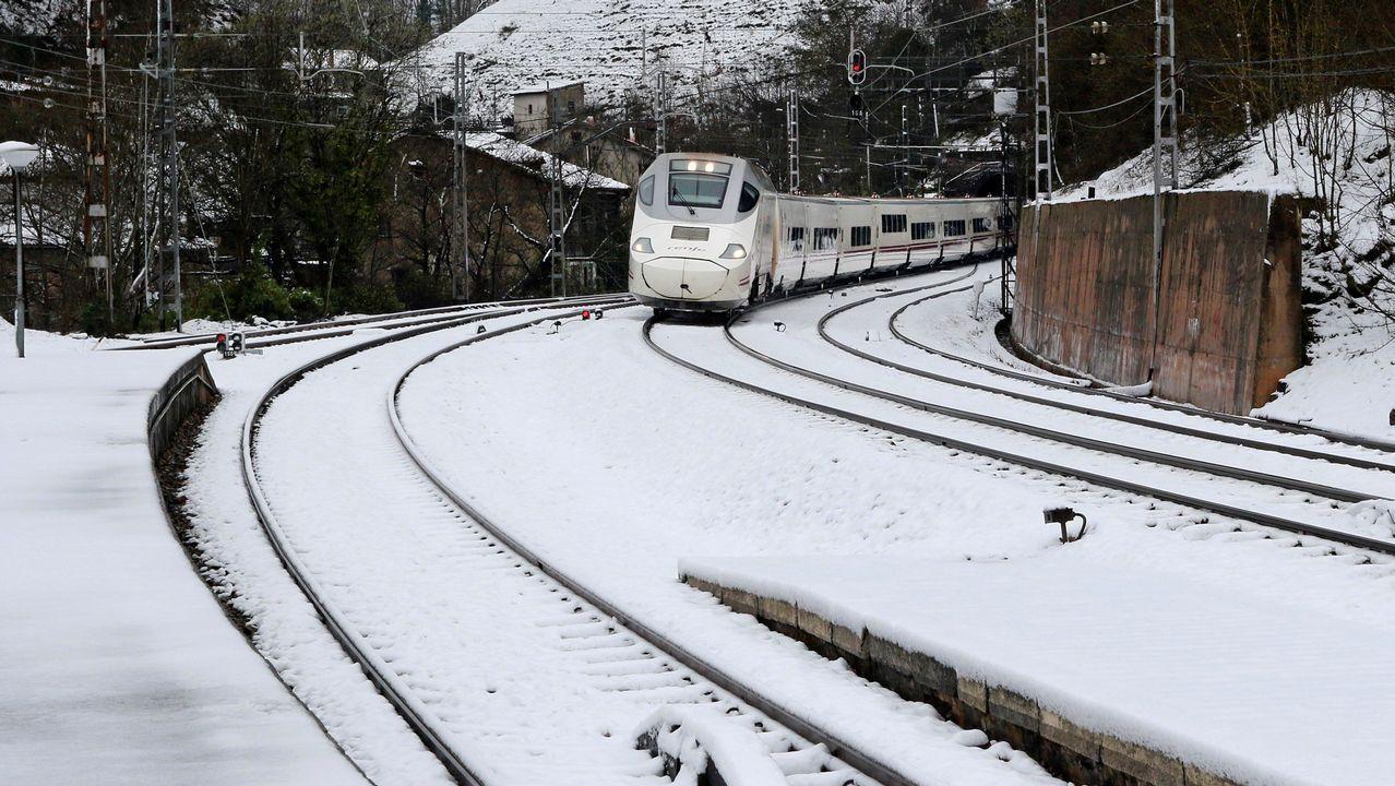 Vista del tren Alvia a su llegada a la estaciónn de Puente de los Fierros en las laderas del puerto de Pajares (Asturias)