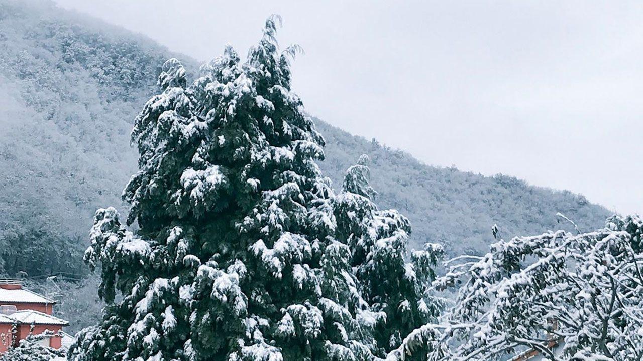 ¿Qué tiempo hará este puente?.La nieve cubriendo los montes y árboles del concejo de Aller
