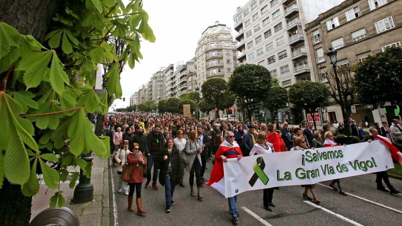 Manifestacion en defensa de los arboles de la Gran Vía