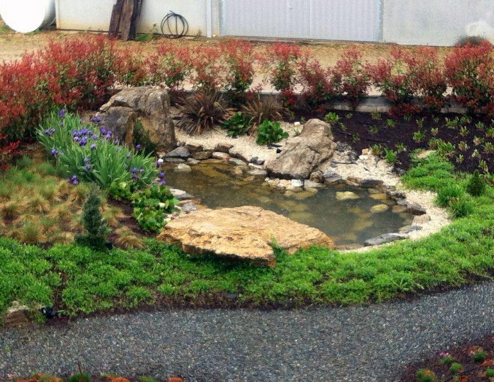 En el parque memorial también hay un pequeño estanque