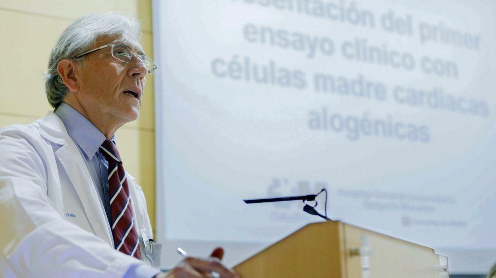 .El jefe de servicio de cardiología del Hospital General Universitario Gregorio Marañón, Francisco Fernández-Avilés, durante la presentación de la terapia pionera en humanos que utiliza células cardiacas alogénicas