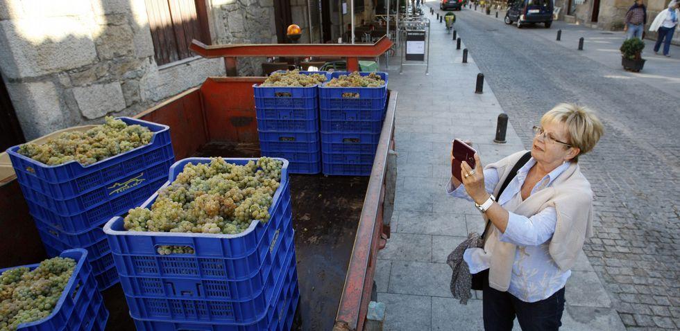 .La vendimia se convirtió también en un atractivo turístico en Fefiñáns, donde los visitantes hicieron fotos a las uvas.