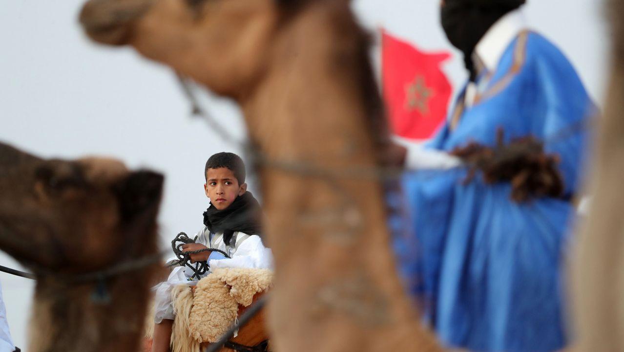 .Un joven monta un camello durante la ceremonia de inauguración del 14º festival beréber de Tan-Tan Moussem, en la ciudad de Tan-Tan