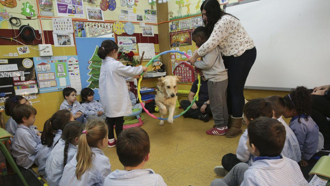 Los perros ayudan a los niños a interiorizar normas básicas y a socializar