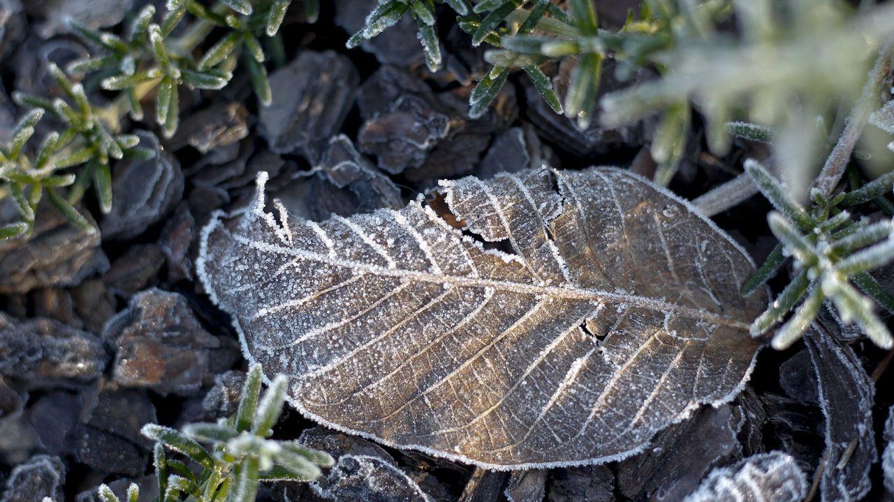 El frío también se hizo sentir en la comarca de O Salnés
