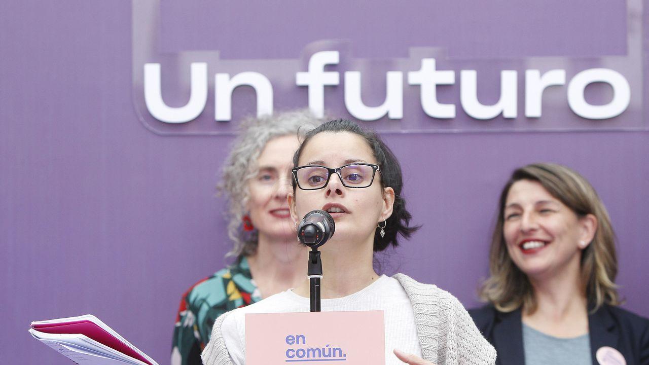 El PSOE hace campaña en el mercado de Vilagarcía.Isabel Carrera, directora del Máster de Igualdad de la Universidad de Oviedo