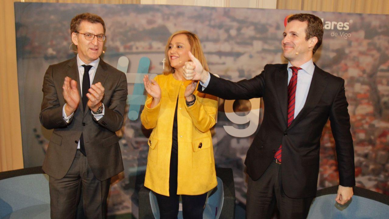 Casado promete una gran rebaja fiscal.Carmen Moriyón, en el centro de la imagen, junto a Pablo Casado, en la manifestación del 10 de febrero en Madrid
