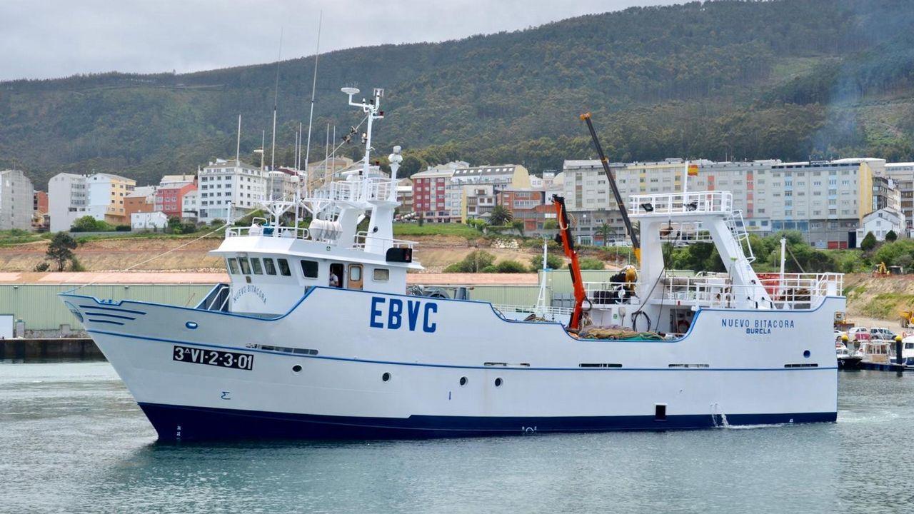La xarda revoluciona la pesca de A Mariña