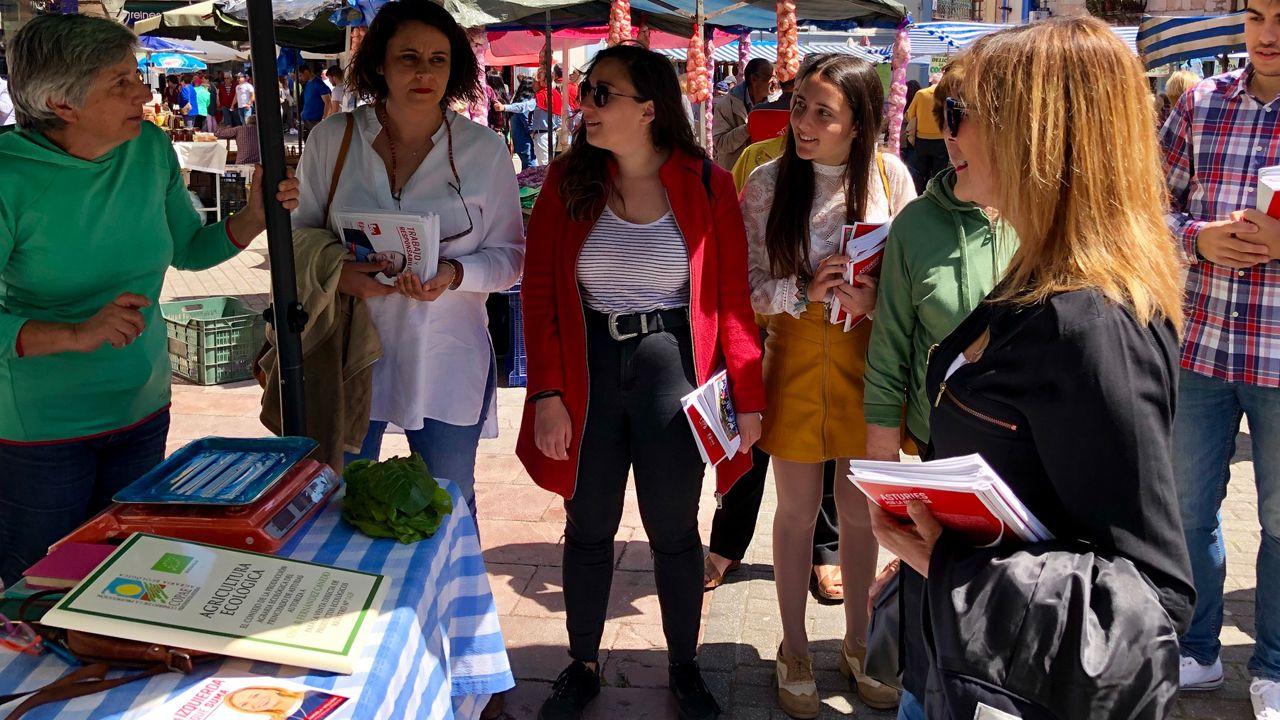 Entrevista a Ángela Vallina, candidata de Izquierda Unida a la presidencia del Principado.Ángela Vallina, en el reparto de propaganda en el mercado de Grado