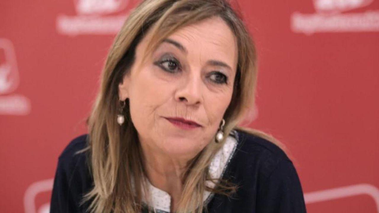 Entrevista a Ángela Vallina, candidata de Izquierda Unida a la presidencia del Principado.Arturo Pérez de Lucia, director General de AEDIVE