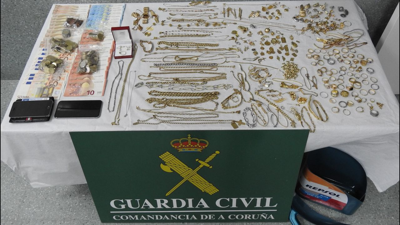 Recuperan cuatro grullas coronodas robadas en Pontevedra