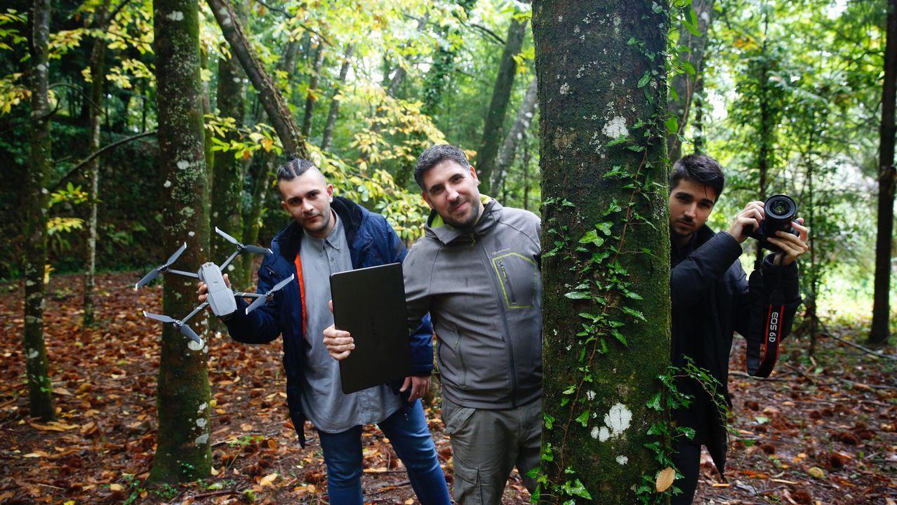 Incendios en Galicia: un año después del desastre