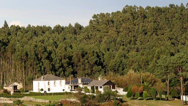 Galiza, incendios: La Xunta admite que en As Fragas do Eume han ardido 750 hectáreas.  - Página 7 X25N6041