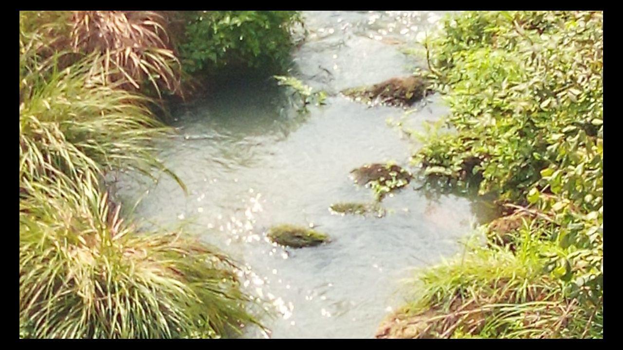 Vertido en el río Lérez