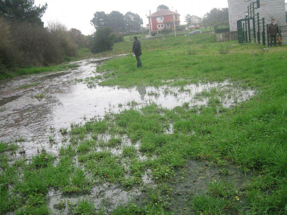 Las aguas fecales se acumulan en un prado cercano.