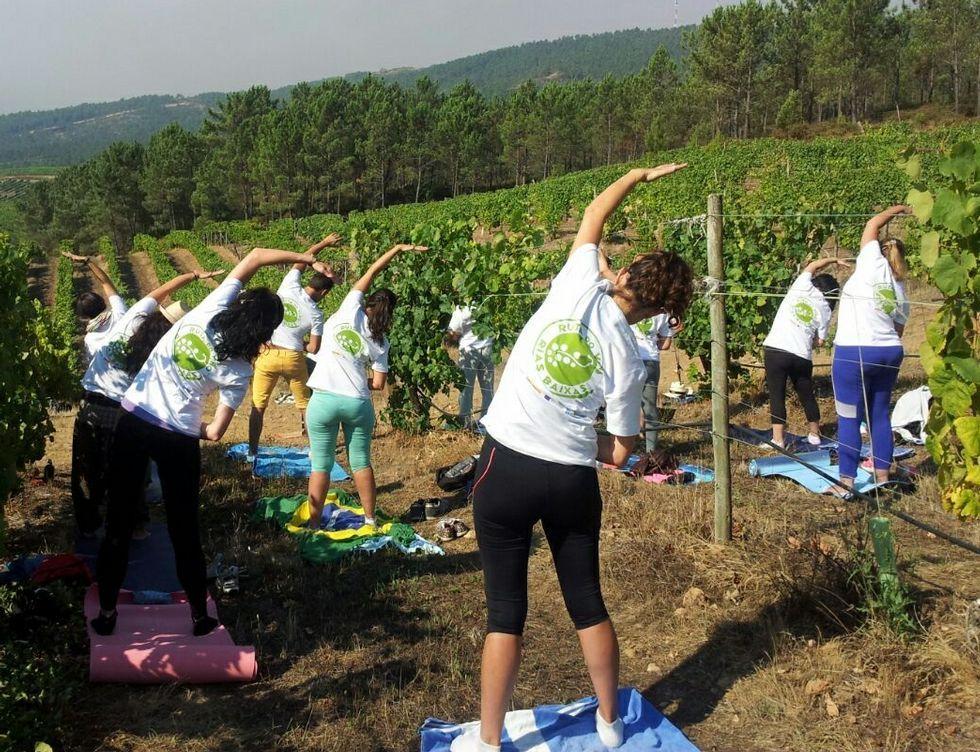 .Los participantes de esta innovadora iniciativa durante la sesión de yoga.