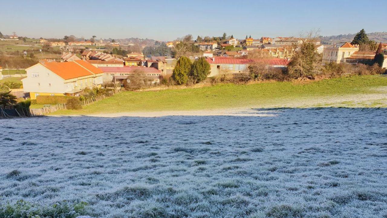 Imagen de la helada en Asturias en Noreña, donde quedó una bonita estampa con este contraste entre la umbría y la solana a las 12.00 horas