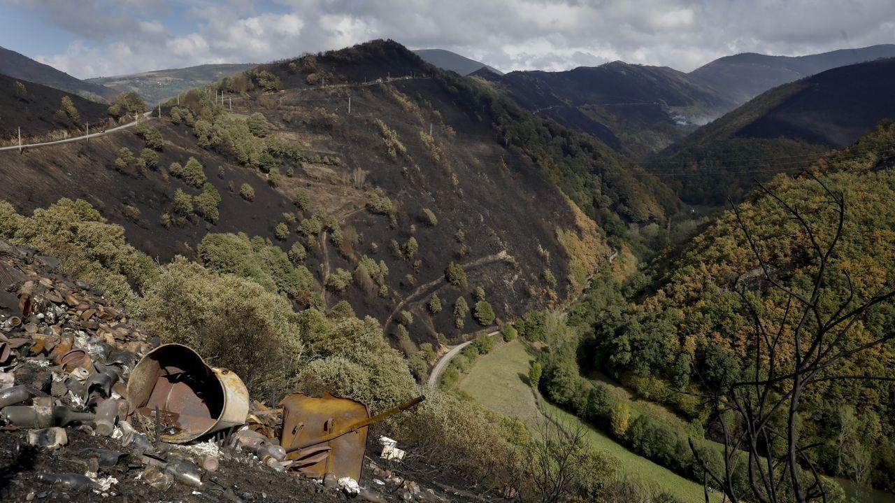 Jornada de puertas abiertas en Cementos Cosmos.En Eirós se han encontrado restos que dejaron neandertales y «Sapiens» cuando habitaban la zona, hace más de 30.000 años
