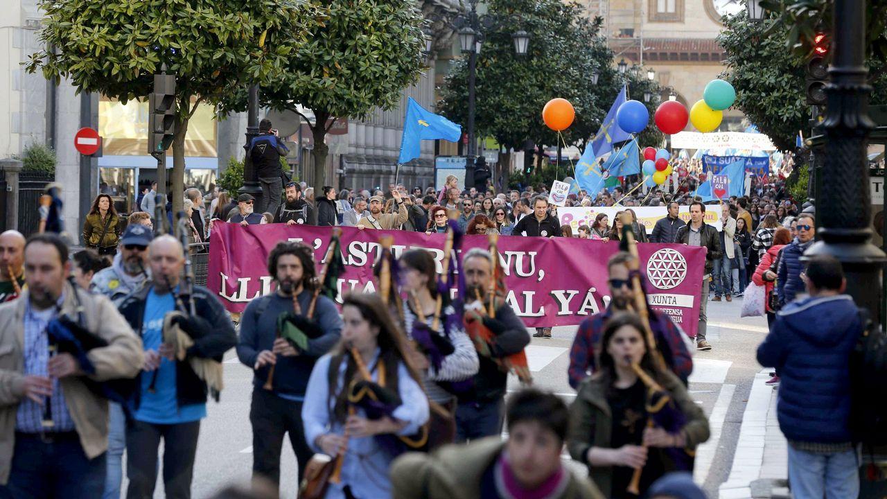 Los defensores de la cooficialidad del asturiano han vuelto a manifestarse hoy por las calles de Oviedo para reclamar que la necesaria reforma del Estatuto de Autonomía para llevarla a cabo se ponga en marcha en la actual legislatura