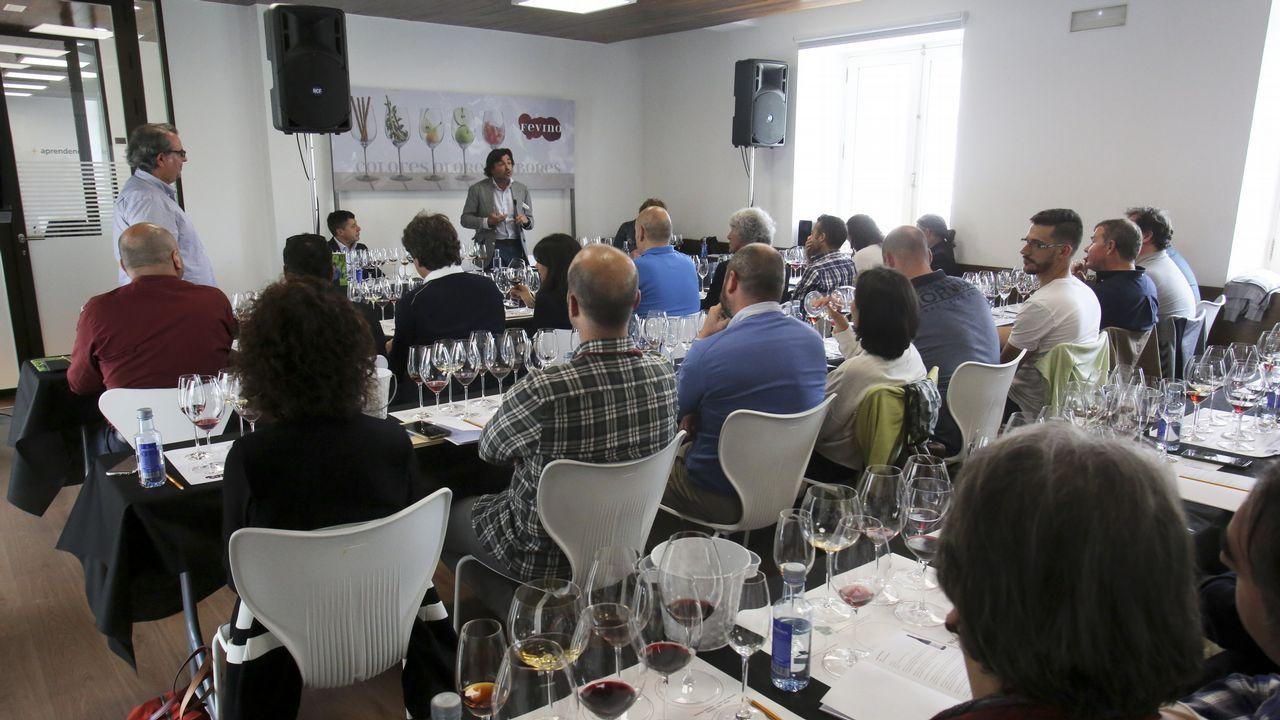 premio uni.Fevino, cata 8 vinos de 100 Puntos Parker, con Luis Gutiérrez