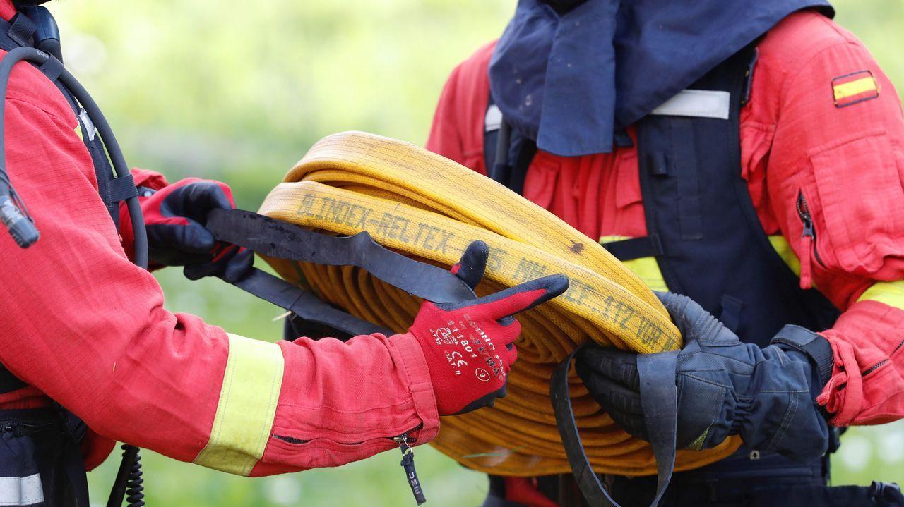 La Guardia Civil libera una partida de aves capturadas en Redondela.Miembros de la Unidad Militar de Emergencias (UME) tras participar en la extinción de un incendio en Naves