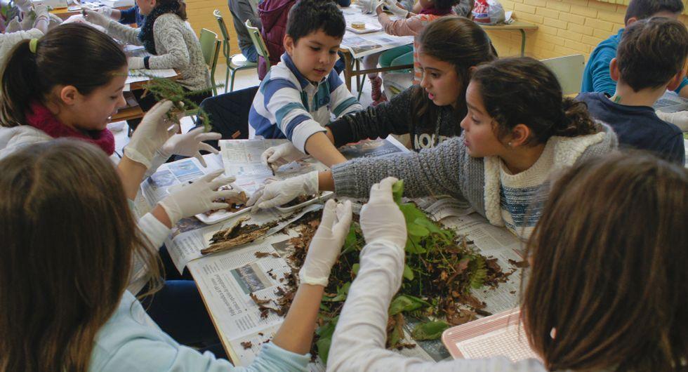 Los niños del CEIP Campolongo, clasificando restos de suelos.