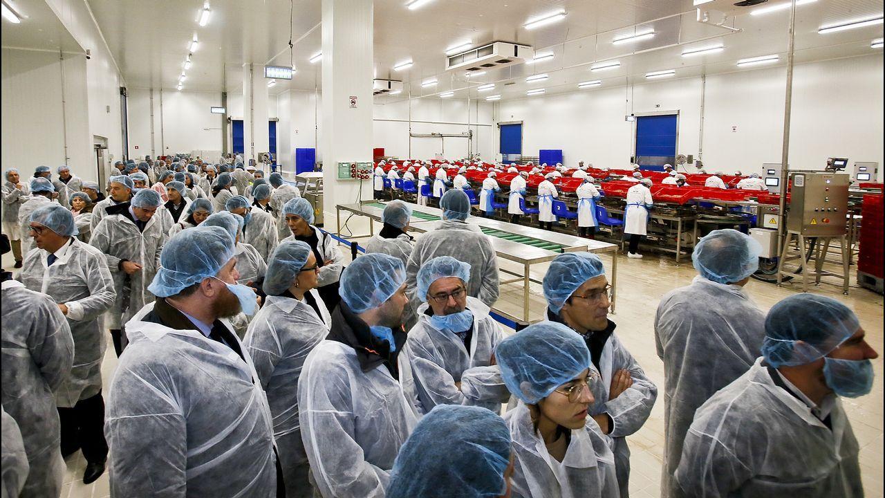 Así es la nueva planta de Atunlo en Portugal