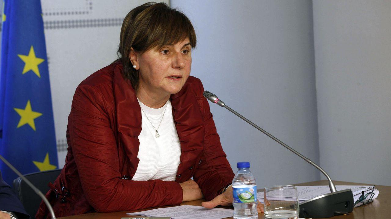 La consejera de Servicios y Derechos Sociales, Pilar Varela.La consejera de Servicios y Derechos Sociales, Pilar Varela