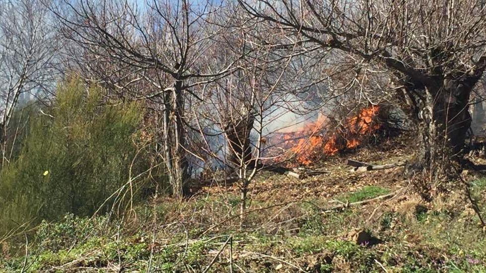 .Incendio forestal en Candeda, en Carballeda de Valdeorras