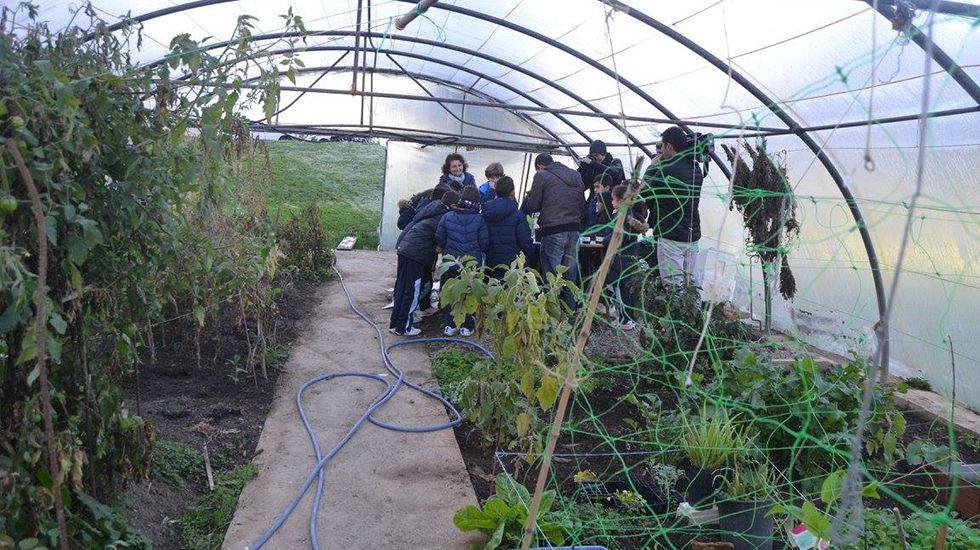 Infravivienda en Turón.Alumnos de un colegio de Oviedo aprenden a cultivar